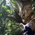 Sonia 40 سنة عنابة