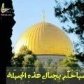 Major19701 49 سنة Gaza