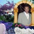 waled40 45 سنة القاهرة